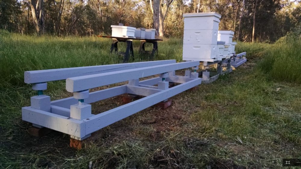 Hive Stand Designs : How to make an ant proof beehive stand backyardherds