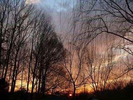 5848749-sunset.jpg
