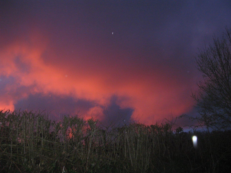 Bottle lambs and night skies 3.jpg