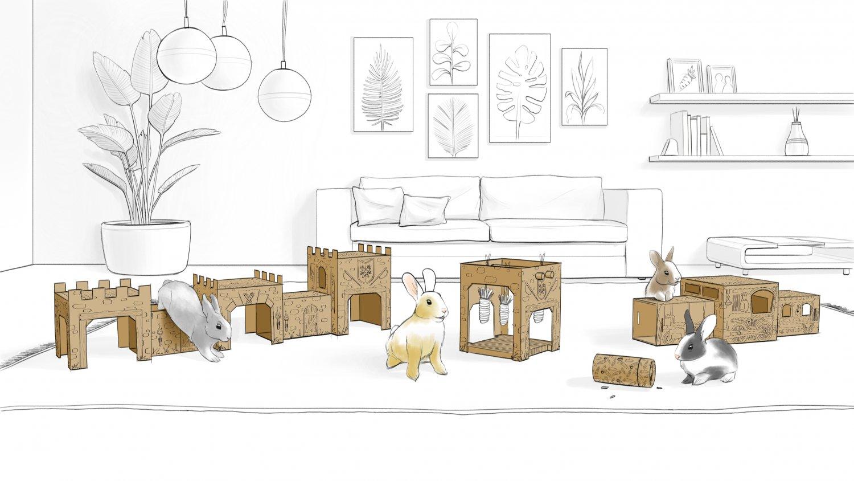 Room Illustration (1).jpg