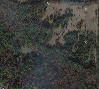 20200731_092300_overgrown_area.jpg