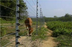 solar-fencing-500x500.png