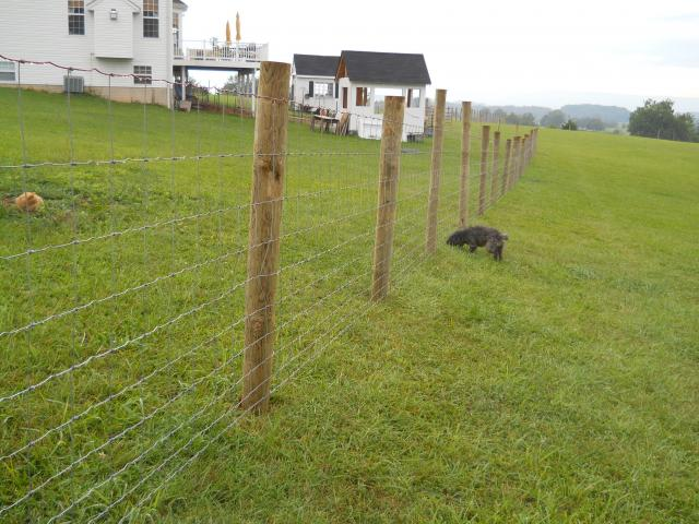 Constructing a woven wire field fence - PICS | Page 4 ...