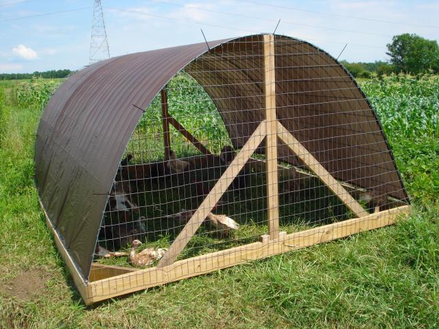 hoop houses for turkeys and such sufficientselfcom