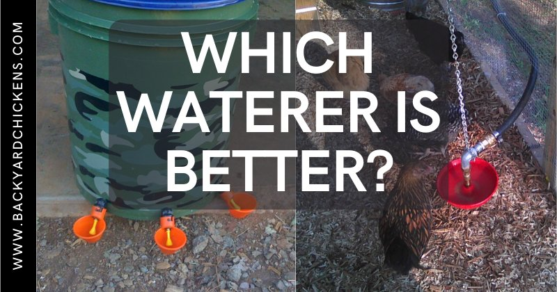 Official BYC Poll - Which Waterer Is Better?