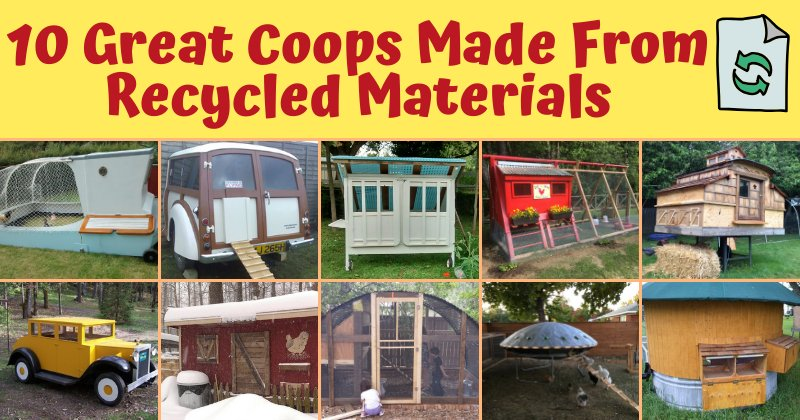 10 Great Coops Made From Recycled Materials