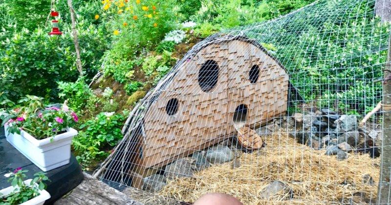 Coop Focus: DIY Hobbit House Chicken Coop