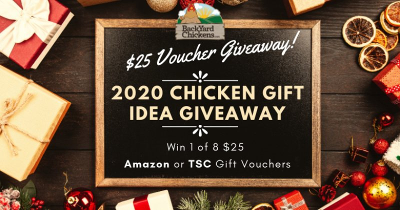 Official BYC 2020 Chicken Gift Idea Giveaway