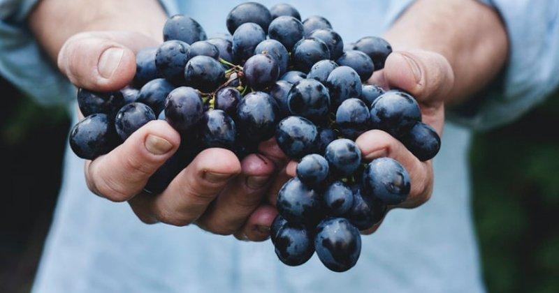 How Do You Use Grapes?